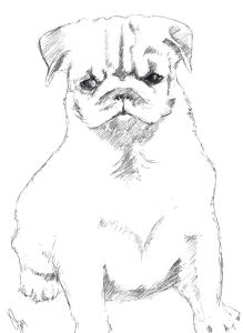 sketch - Dana's puppy small